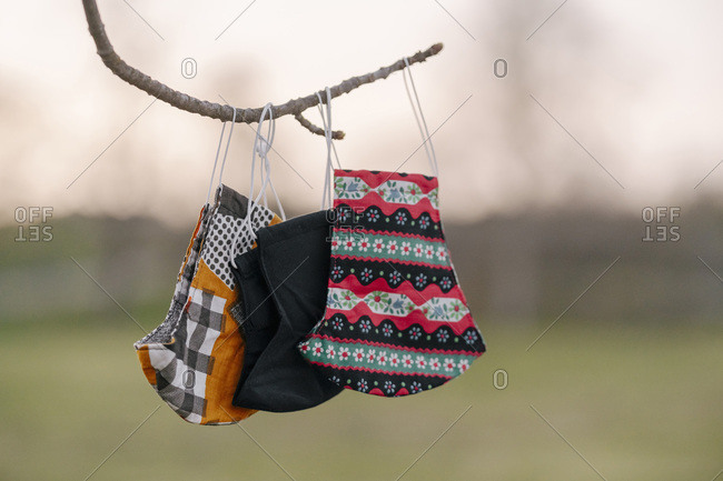Close-up of face masks hanging from twig at park