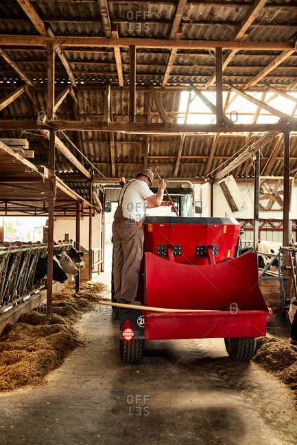 Male farmer standing on agricultural vehicle in dairy farm