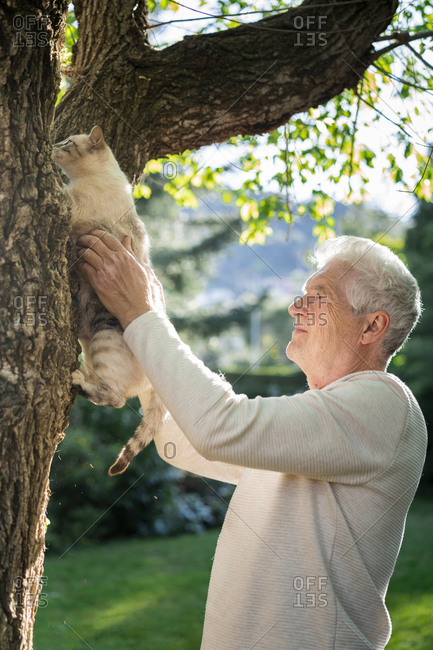 Senior with cat climbing on a tree in garden