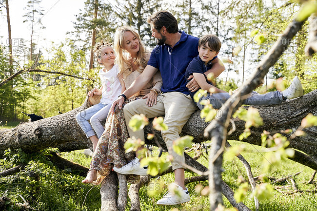 Family sitting on fallen tree in forest