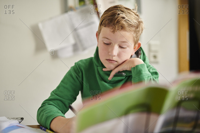 Dedicated boy studying at home