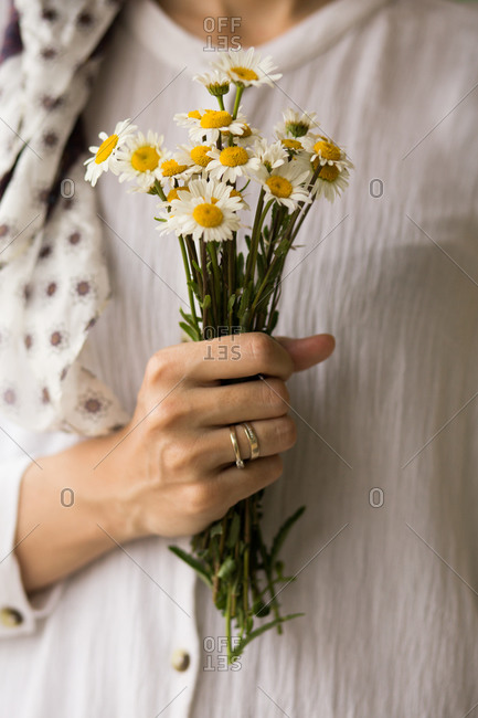 Close up of a woman holding a bouquet of fresh picked margarita flowers