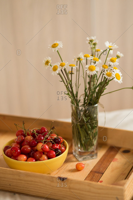Close up of a bowl with fresh picked cherries and flowers on wooden tray