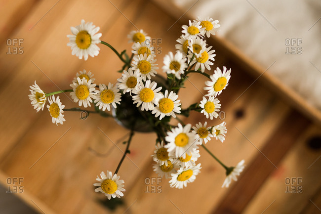 Overhead view of fresh picked flowers on wooden tray
