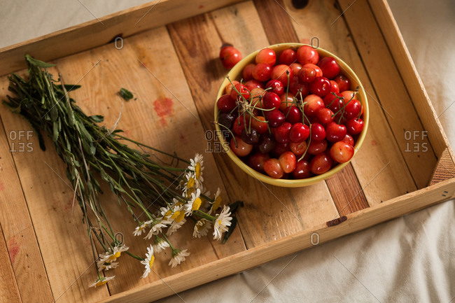 Top view of fresh picked cherries and flowers on wooden ground