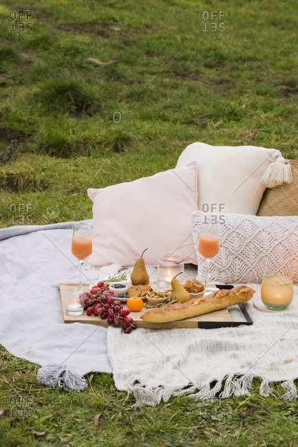 Cozy picnic served on blanket in a grassy field