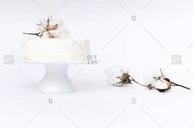 White cake with cotton plant on white background