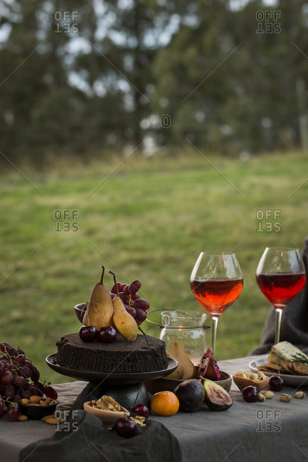 Picnic with chocolate cake and fruit served with wine