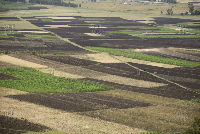 Rolling Farmland, Ethiopia landscape image