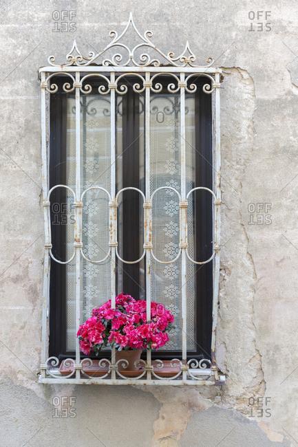 Montalcino, Tuscany, Italy landscape image