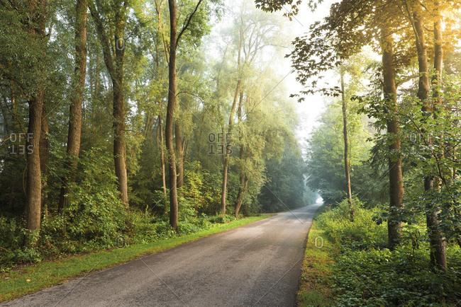 Gravel road, Bavaria, Germany, Europe