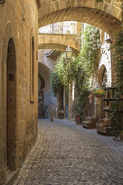 Medieval alley, Orvieto, Umbria, Italy