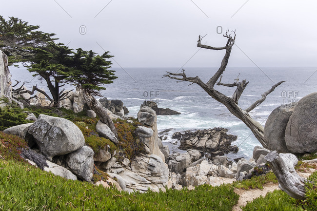 Cypress Point, Pebble Beach, California, USA