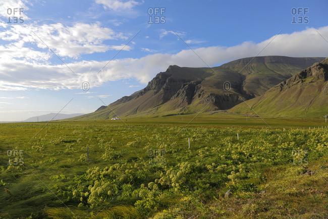 Landscape at Ringstrasse 1, Reykjavik, Iceland