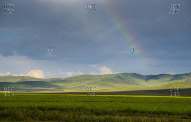 Prairie of the Mongolian steppe, Mongolia