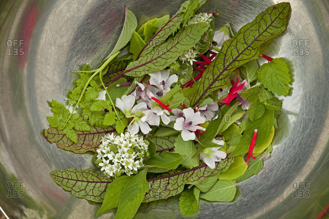 Edible herbs and flowers in a bowl