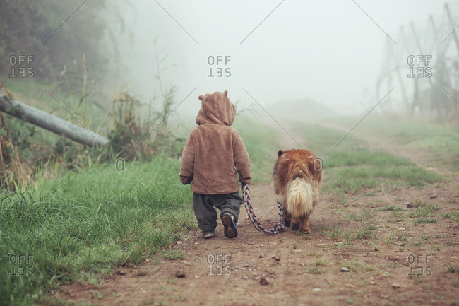 Toddler is walking in the fog with dog