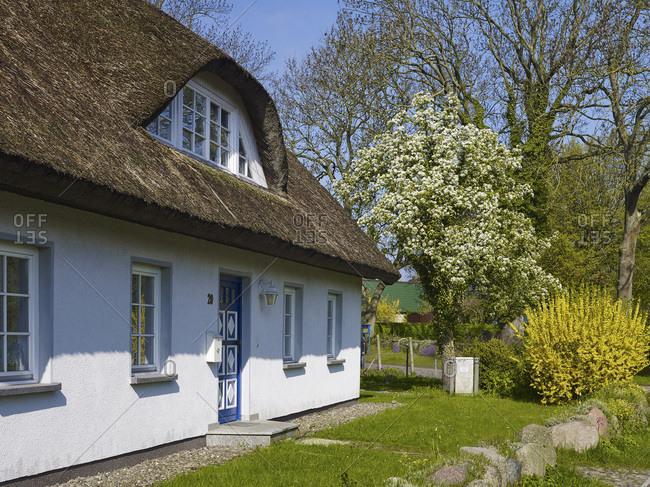 House in Grosszicker, Monchgut peninsula, Ruegen, Mecklenburg-West Pomerania, Germany
