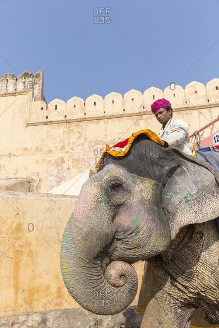 February 28, 2016: Amber Fortress, Amber Fort, Jaipur, Rajasthan, India