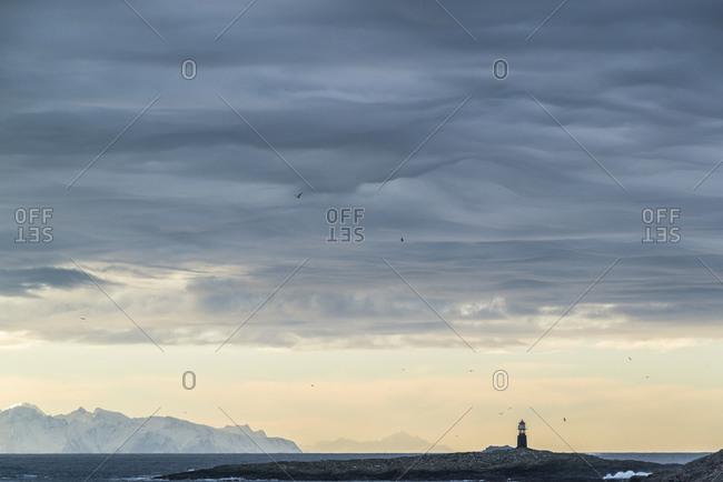 Fjord landscape with lighthouse at Gunnarholmen, Skarvagen on Vesteralen, Norway
