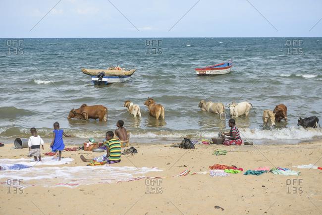 November 22, 2014: Fish market on Lake Malawi, Malawi, Africa