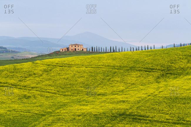 The Crete Senesi, erosion landscape, Province of Siena, Tuscany, Italy