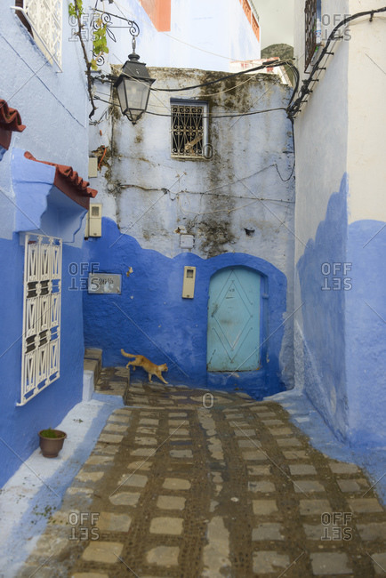 May 12, 2016: Streets and alleys of the Medina of Chefchaouen, Morocco