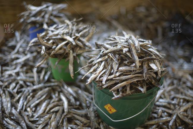 November 21, 2014: Fish at fish market on Lake Malawi, Malawi, Africa