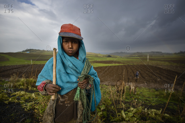 July 15, 2014: Ethiopian farmers work the soil by hand, Debre Berhan, Ethiopia