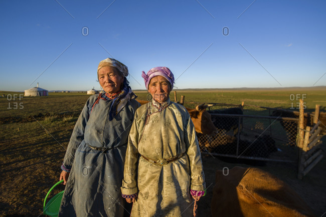September 13, 2013: Mongolian nomad women with dairy cows in the steppe, Mongolia