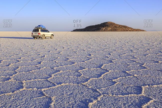December 19, 2016: Isla Incahuasi in the Salar de Uyuni, largest salt pan of the earth, Altiplano, Bolivia, South America
