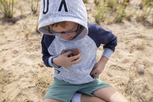 Boy collecting sea urchin shells at the beach
