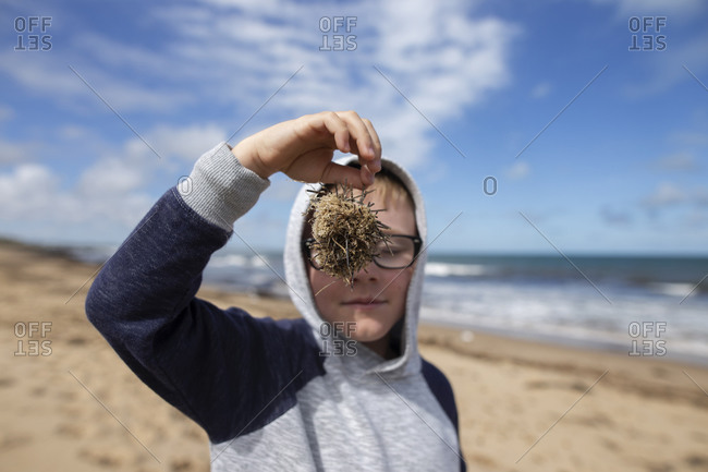 Boy standing on beach holding collection of twigs and tried matter in front of his face