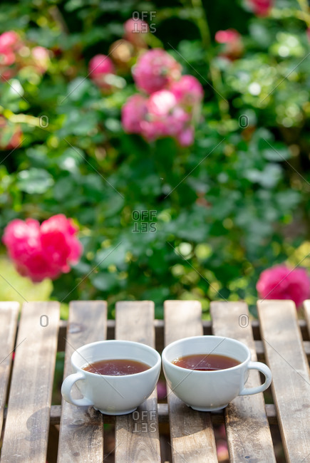 Two cups of tea on wooden table in a garden with roses in the background