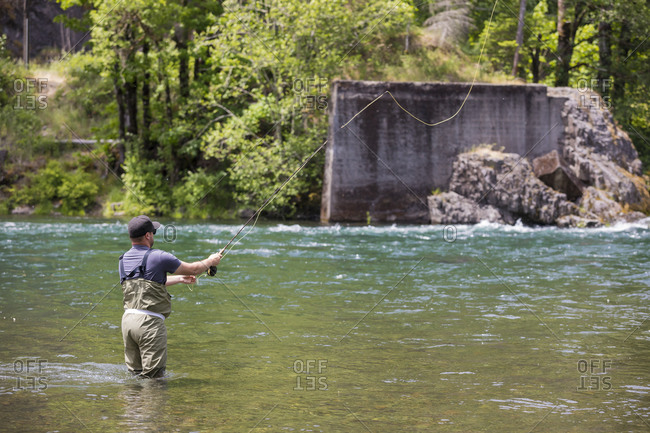 Fly fisherman casting to rising fish in the Summer along the McKenzie River in Oregon. The McKenzie is known for it's unique strand of native redside rainbow trout living in clear