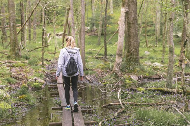 Woman hiking in forest, West Greenwich, Rhode Island, USA