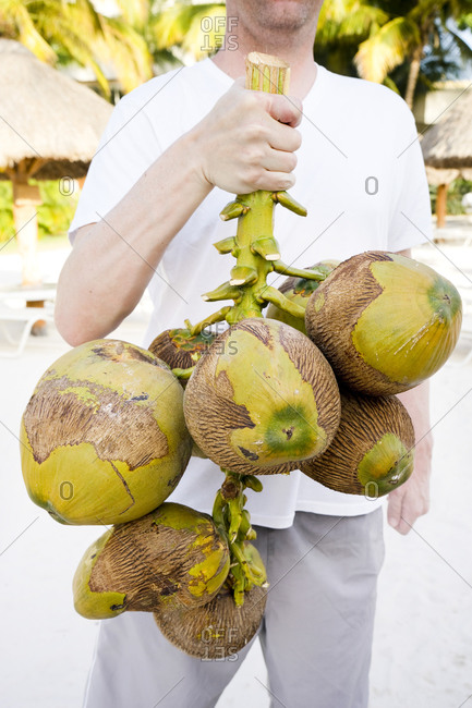 Man holding branch of coconuts, San Miguel Dec Cozumel Quintana Roo, Mexico