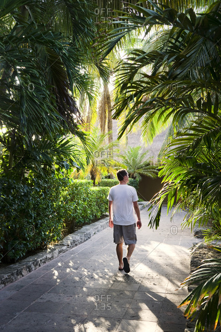 Man walking along footpath among palm trees, San Miguel Dec Cozumel Quintana Roo, Mexico