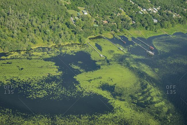 Lake George with cyanobacteria and algae, Florida, USA