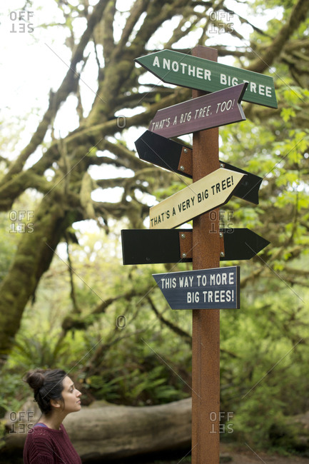 Funny directional sign in redwood forest, Redwoods, California, USA