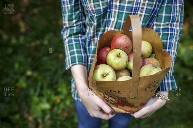 Man holding bag of apples, Middleburg, Virginia, USA