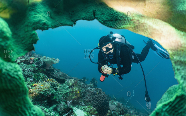 Female diver exploring soft coral garden close to Komodo Island in Indonesia