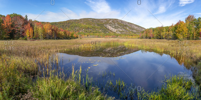 Champlain mountain reflected in tarn, Acadia National Park, Maine, USA