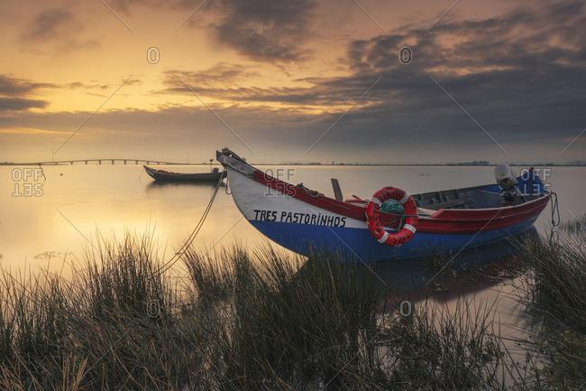Portugal, Aveiro, Moreira, Aveiro - April 23, 2016: Old fishing boats and shellfish in the Aveiro river, Portugal.