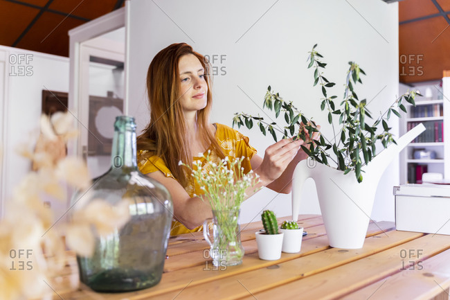 Young woman examining houseplants on table at home during curfew