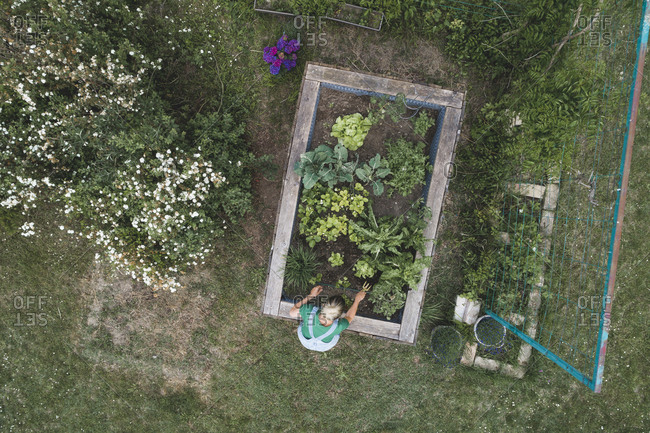 Drone shot of mid adult woman planting vegetables in raised bed at yard