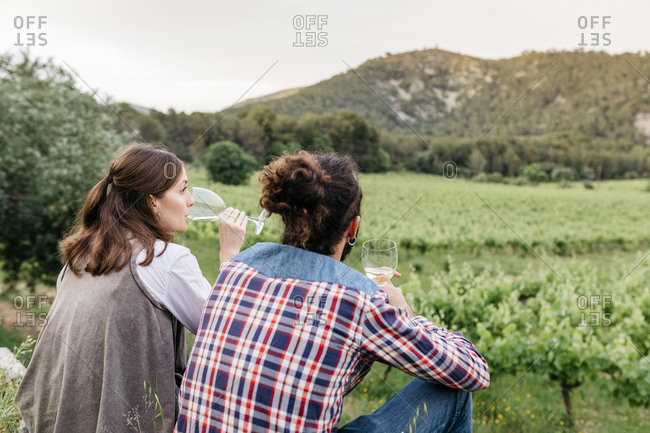 Couple tasting white wine while sitting at vineyard