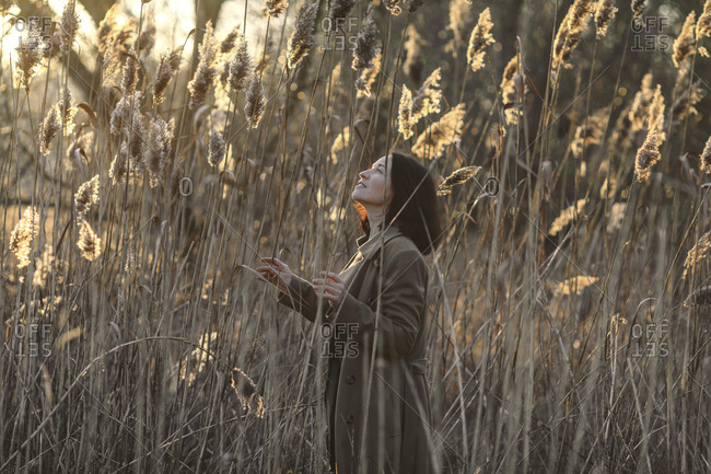 Woman looking up while standing amidst reeds in forest