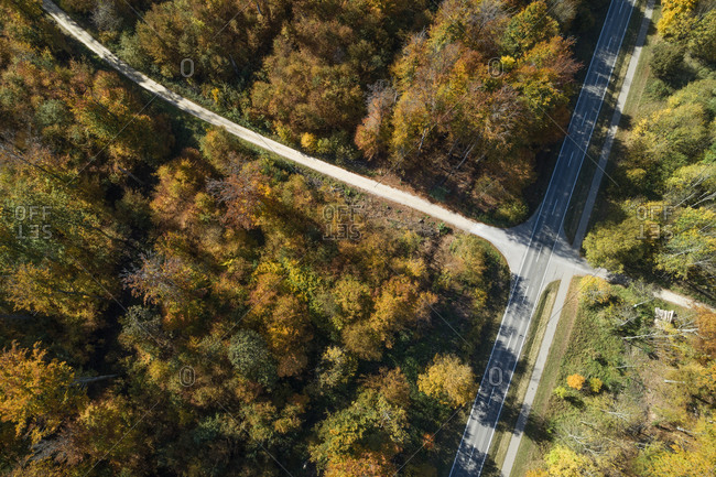 Germany- Baden-Wurttemberg- Drone view of road intersection in middle of autumn forest