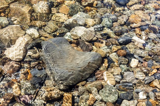 Heart shaped rock in Big Wood River